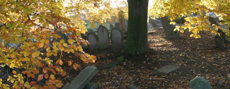 Židovský hřbitov - Třešť